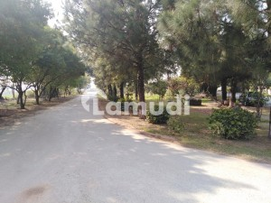 06 Kanal Corner Plot For Sale At Very Beautiful And  VIP Location