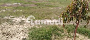 42 Marla 108 Sq Ft Of Plot On Main Mm Alam Link Road And Top Location Facing Park