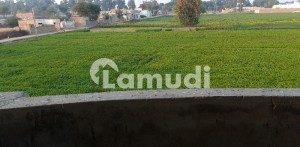 20 Kanal Agricultural Land For Sale