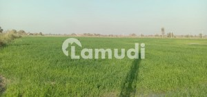 Agricultural Land Available For Sale In Jamrao Head