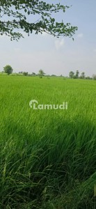 Agricultural Land For Sale Situated In Canal Expressway