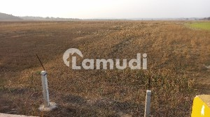 To Sale You Can Find Spacious Agricultural Land In Neela Dullah