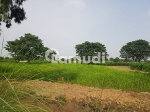 16  Kanal Plot For Farm House Available For Sale On Main Bedian Road At Best Location