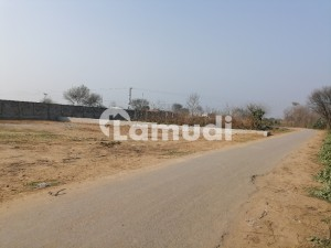 You Can Find A Gorgeous Commercial Plot For Sale In Jalalpur Jattan Road