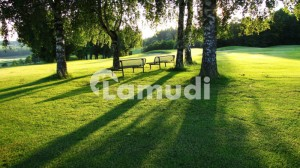 14 Marla Cheapest Plot near Park and Main Boulevard in Lake City  Sector M3A