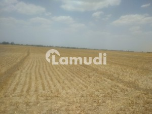 40 Acr Agriculture Land For Sale In Chunia,
