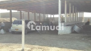 2 Acre Land For Dairy Farm At Dumba/Doree Goth