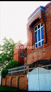 Commercial House For Rent In Altaf Town