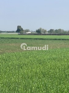 270000  Square Feet Residential Plot In Pasrur Road Is Best Option