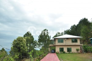 Upper Portion For Rent In Summers Hut