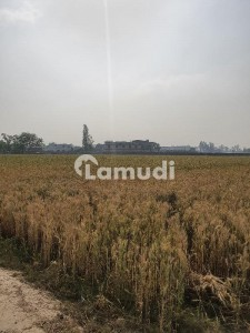 50 Kanal At The Back Of Main Raiwind Road Alamgir Grenite Factory Available For Sale