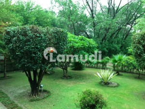 Affordable Residential Plot For Sale In Gulberg