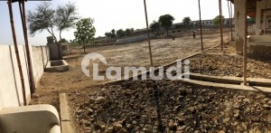 Cattle Or Dairy Farm Available For Rent