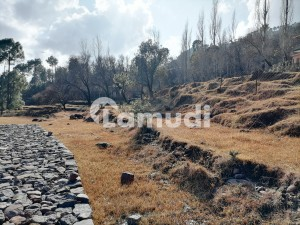 4 Marla Residential Plot Up For Sale In Murree Expressway