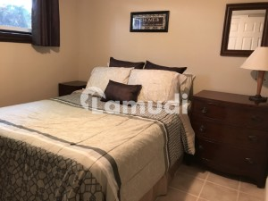 Furnished Room For A Paying Guest