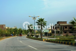 Sector H 5 Marla Street 1 Highted Location Plot Available For Sale