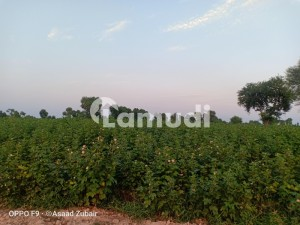 12.5 Acre Fertile Agricultural Land Available For Sale