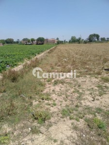 2 Acre Commercial Plot For Sell At Kamoke Road Near Daska At Prime Location