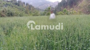 This Is Your Chance To Buy Residential Plot In Abbottabad