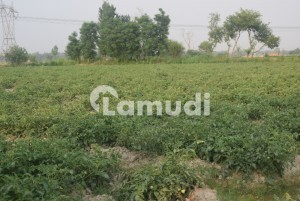 89 Kanal Agricultural Land In Lahore Sargodha Road Is Available
