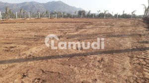 300 Kanal Land For Sale In Domeli