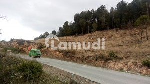 Ideal Commercial Plot Is Available For Sale In Mansehra