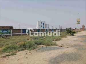 675  Square Feet Commercial Plot In Indus Housing Society Best Option
