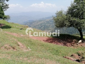 Get Your Dream Agricultural Land In Murree City Murree