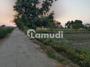 Looking For A Agricultural Land In Sue-E-Asal
