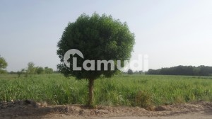 108 Kanal Industrial Land For Sale