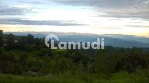 Sale & Purchase in Rawalakot Azad Kashmir in All City