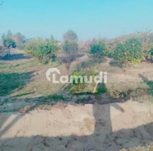 Land For Sale Nehar Two Road Main Concrete Road Canal Water House Inside Bagh Inside