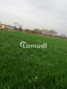 2 Kanals Farm House   Available For Rent
