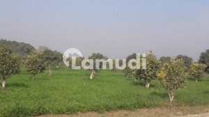 Agricultural Property With Commercial Land On Main GT Road