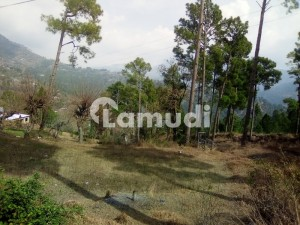5 Marla Plot For Sale In Cool Area New Murree