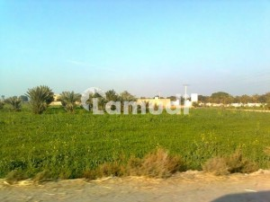 400 Acre Agriculture Land For Sale In Sanghar Sindh