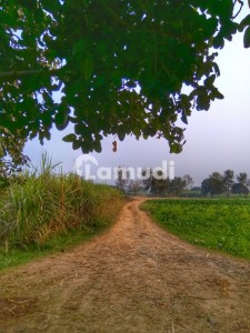 Agricultural Land Is Available For Sale At Mongi Bangla Road