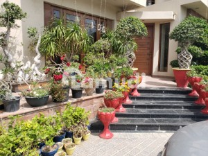 1000 Square Yard Lavishly Furnished Slightly Used Bungalow Available For Rent
