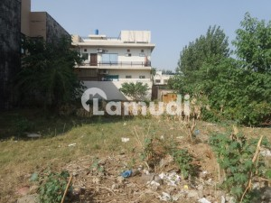 35x80 Plot With Extra land Is Available For Sale