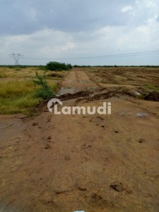 Cattle And Farmhouse Land For Sale