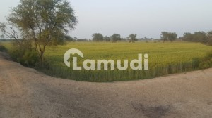 Agriculture Land For Sale Fertile Land Rajanpur