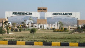 5 Kanal Form House For Sale At Multi Residencia & Orchards