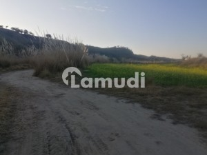 250 Kanal Agricultural Land For Sale In Chakwal