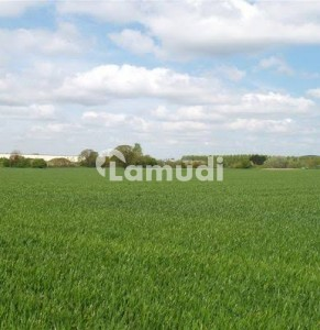 25 Acre Agricultural Land For Sale