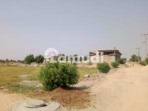 A Residential Plot West Opened Sell For  A 1 Ali Mir Shah