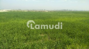 Agriculture Land For Sale Of 25 Acre