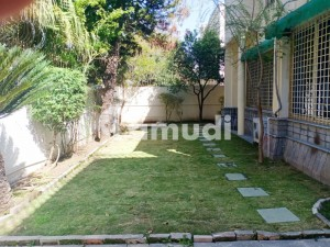 Beautiful House Is Available For Rent In G6 Islamabad