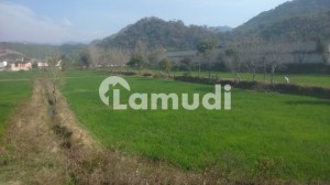 25 Kanal Agricultural Land  Available For Rent
