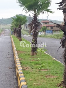 One Kanal Plot For Sale In E-19 Ministry Of Commerce