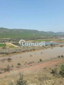2000 Kanal  Agricultural Land For Sale Q